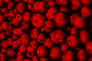 photography-of-pile-of-apples-1453713_ed