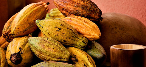 cacao-3707275_1920_edited.jpg