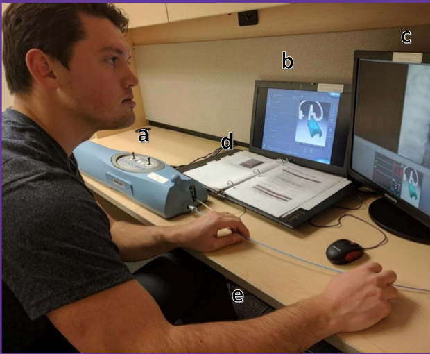 Skill Development in Cerebral Angiography Coiling Procedures using Haptic Simulation