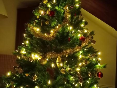Merry Festive Season!