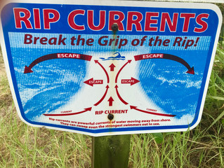 Riding the Riptide