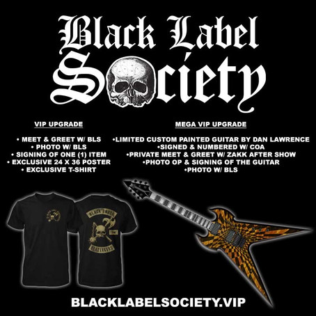 North American Chapter's 2019 VIP