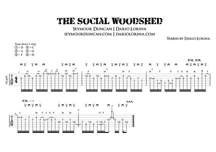 Seymour Duncan Social Woodshed Lick.jpeg