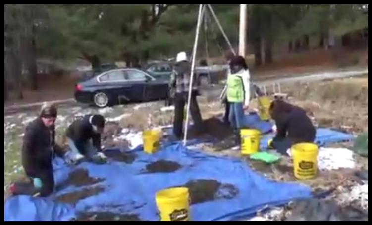 Forensic Dig