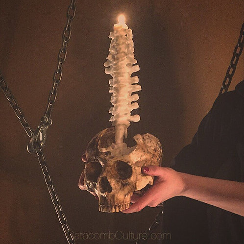 Vertebrae Candle