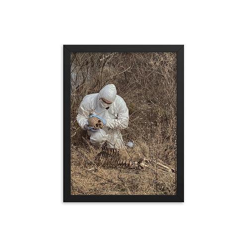 Framed Forensic poster 02