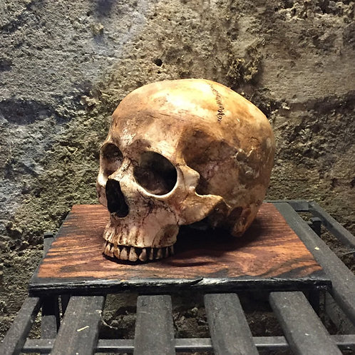 Skull of the Watchman