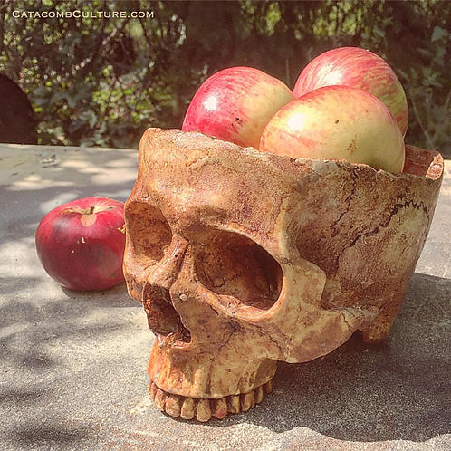Human Skull Bowl Decor