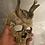 Thumbnail: Skull Mask - Jaw Crown