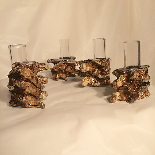 Vertebra Shot Glasses