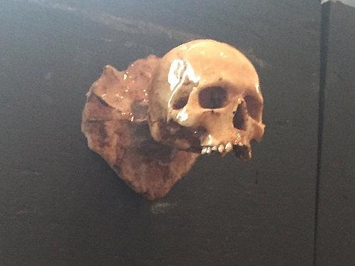 Skull Knobs