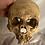Thumbnail: Skull Wall Mount - 7