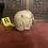 Thumbnail: Full Skull (Decayed 3)