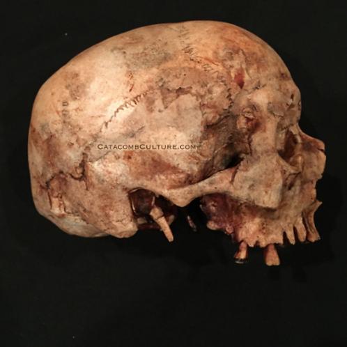 Hyperrealistic Skull