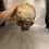 Thumbnail: Full Skull (Decayed)