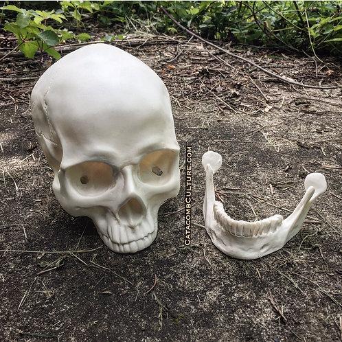 Faux Skull