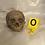 Thumbnail: Dirty Archeology Skull