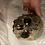 Thumbnail: Skull Wall Mount - 5