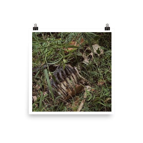 Skeleton Poster 02