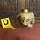 Thumbnail: Skull Mug (Gold/No Jaw)