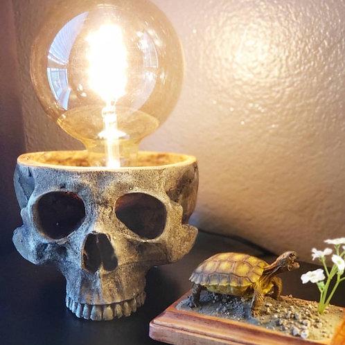 Skull Bowl Lamp