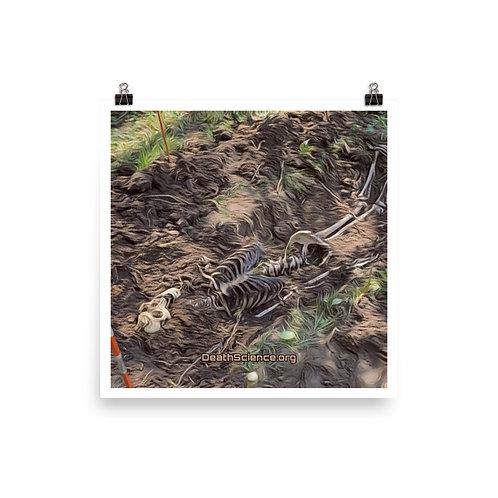Skeleton Poster 08