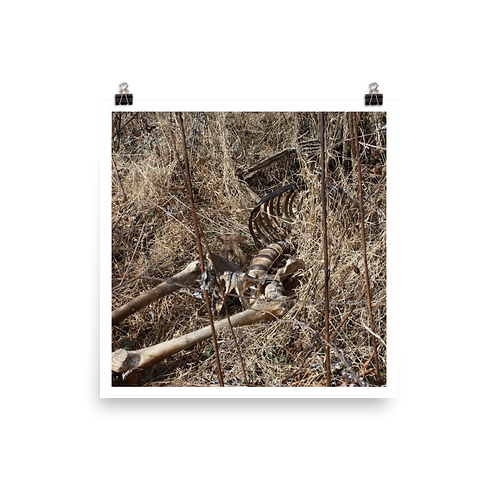Skeleton Poster 01