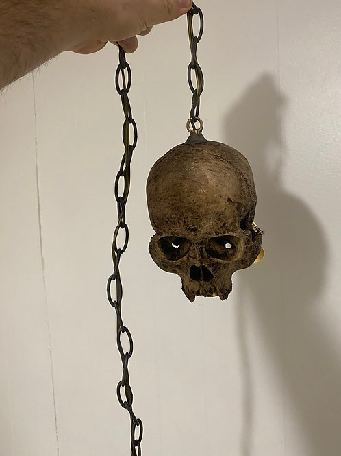 Skull Ceiling Light