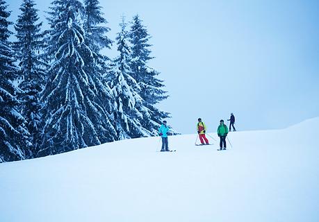 Skupina lyžařů