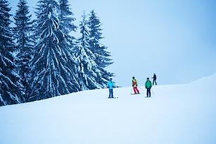 スキーヤーのグループ