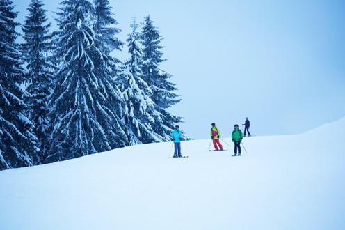 Groupe de skieur