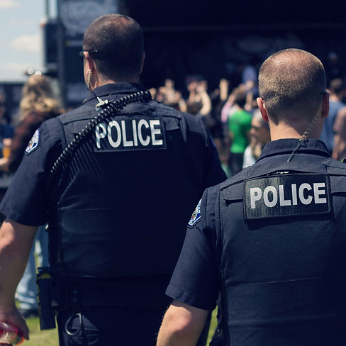 rear-view-of-police-force.jpg
