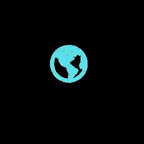 ief international