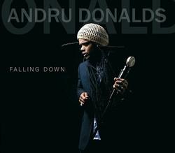 'Falling Down' 2011