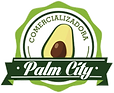 Palm City.png