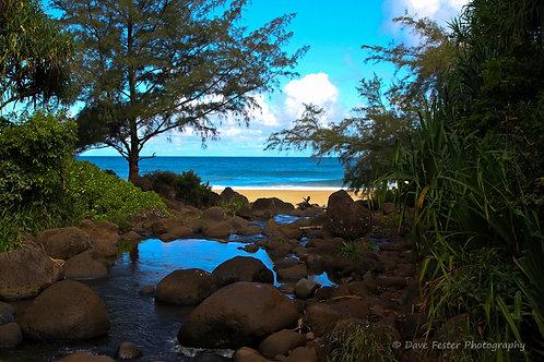 Paradise on Earth (World-18)