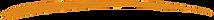 swoosh - orange.png