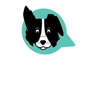 Scout-white.png