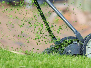 3 Great Reasons to Leave Your Grass Clippings Alone
