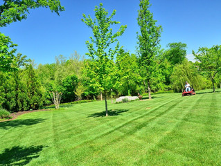 Make Lawn Care Your Hobby for National Hobby Month
