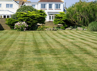 Mowing the Lawn Gives You More than Curb Appeal