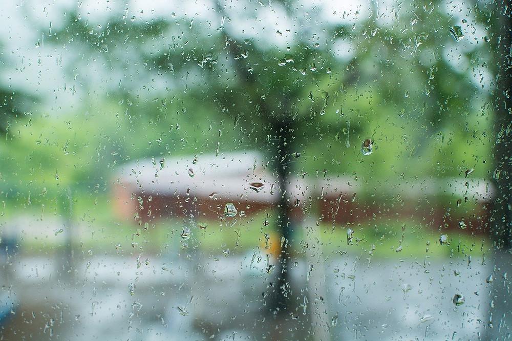 rainy day extra rain on the lawn