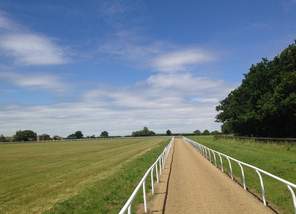 empty gallop.JPG