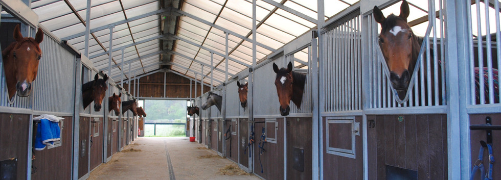 BARN STABLES