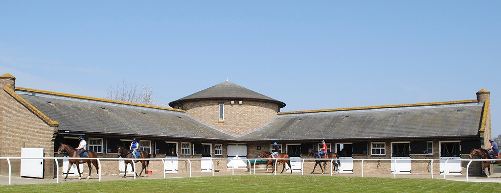 Racehorse pre-training Newmarket Great Bradley Oak Stud Stables training and breaking yearlings