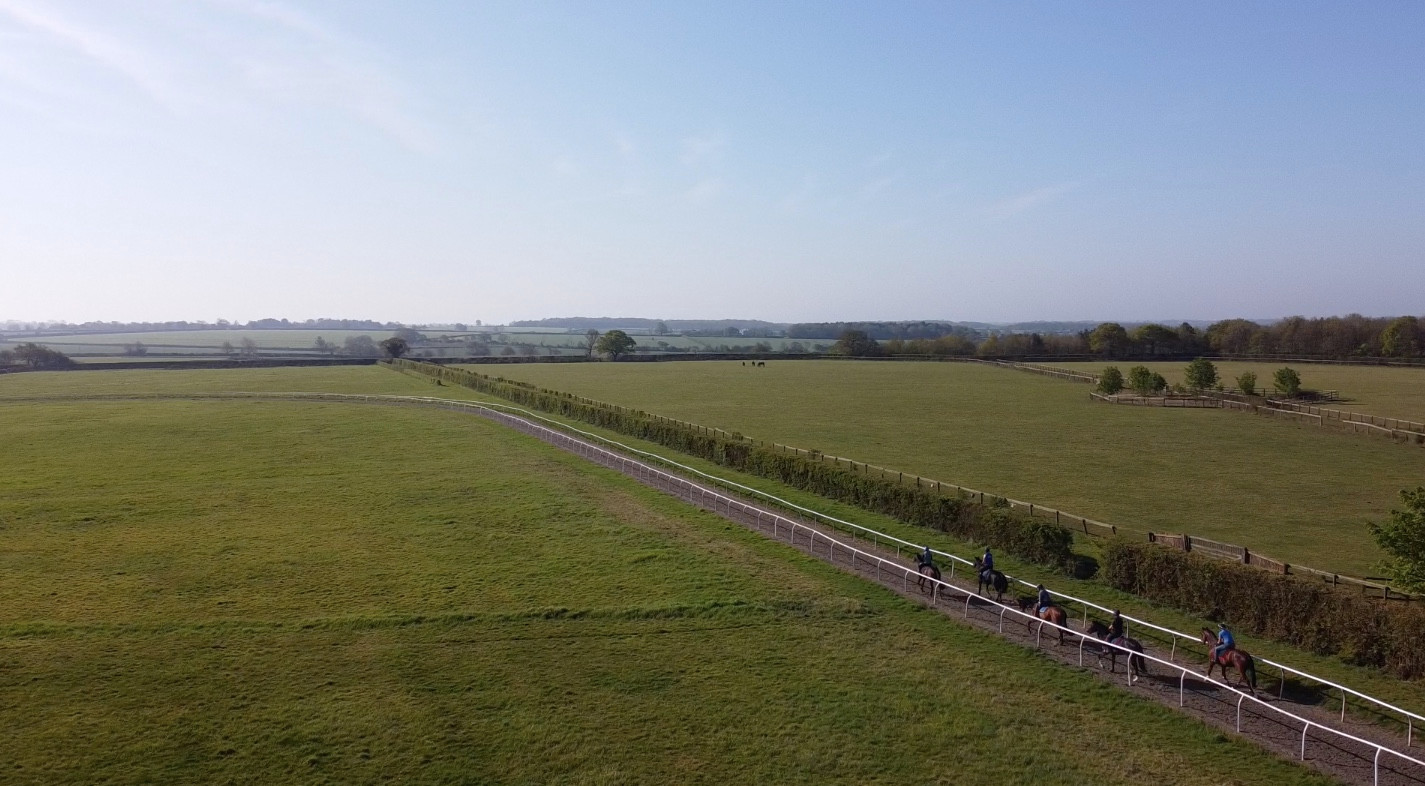 gallops and paddocks