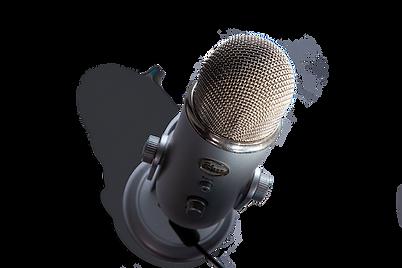 mini microphone.png