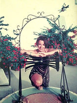 Helena Olive Hearts wedding planner