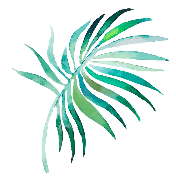 palm2_edited.png