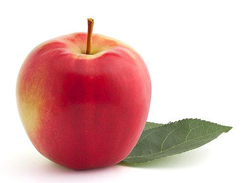 Pomme SunRise